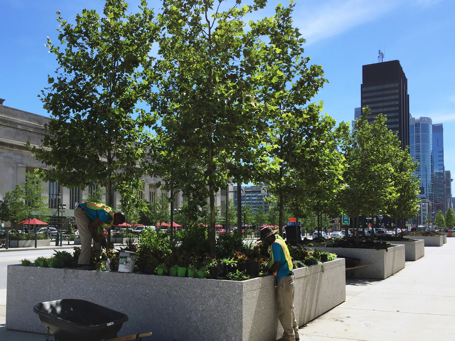 Green City Works installed plants in beds lining Market Street, outside of Brandywine Realty Trust's IRS Building.