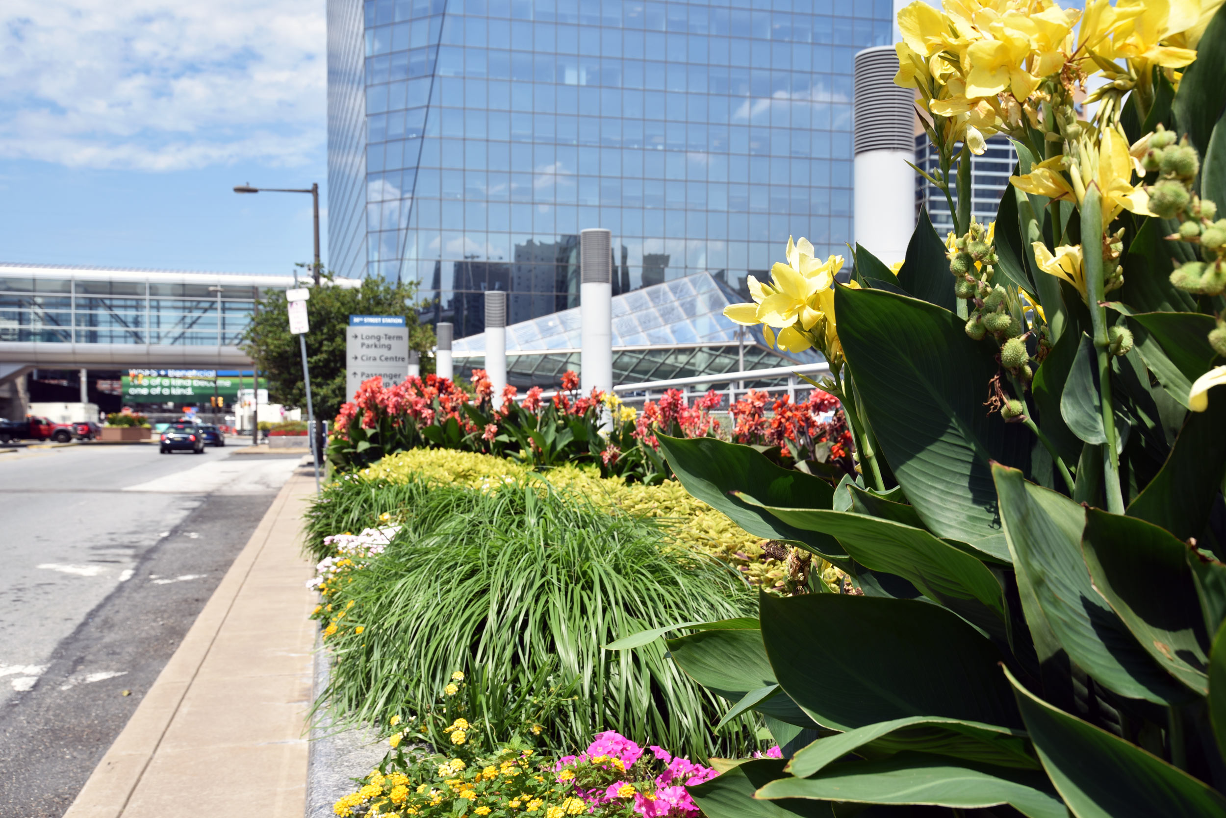 GCW performs regular landscape maintenance at the Cira Centre and installs new annual planting schemes each spring and fall for seasonal appeal.