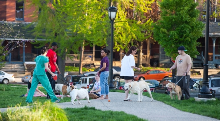 Residents and their dogs gather for a meet-up
