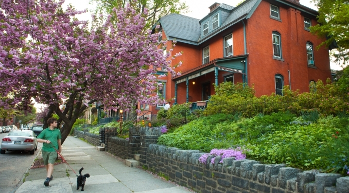 A resident walks his dog and looks at apartments in University City