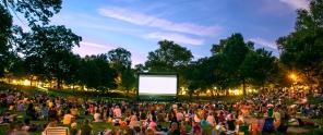 the crowd enjoying a movie